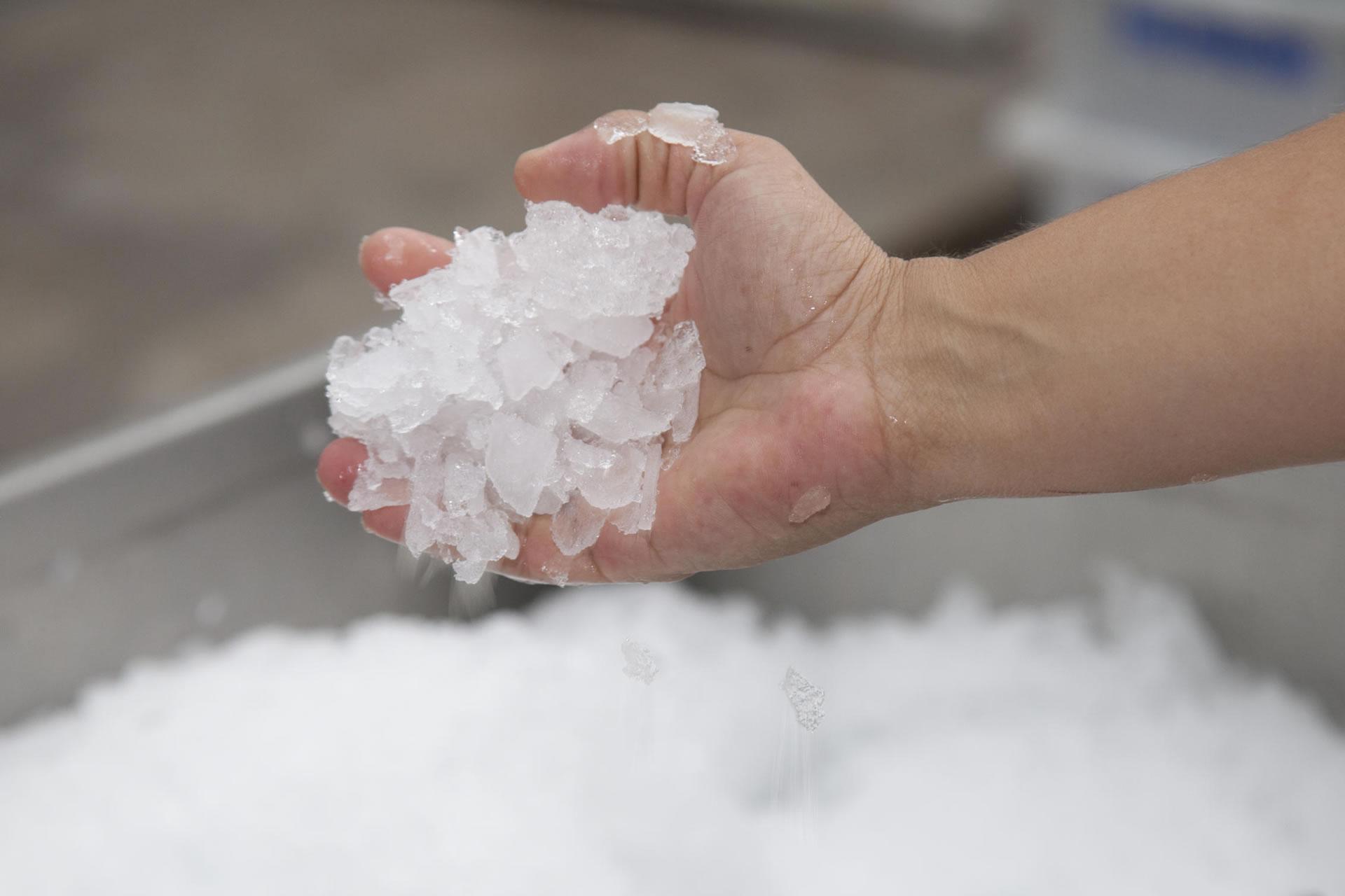 Gelo em Escamas